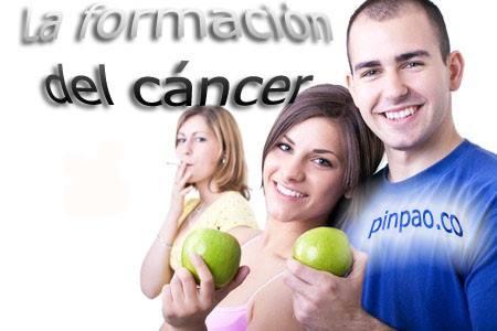la formacion del cancer