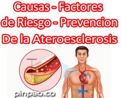 causas de la ateroesclerosis