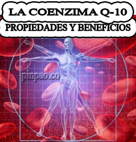 coenzima-q10